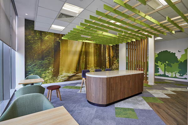 HP_acoustic ceiling panels and wallpaper
