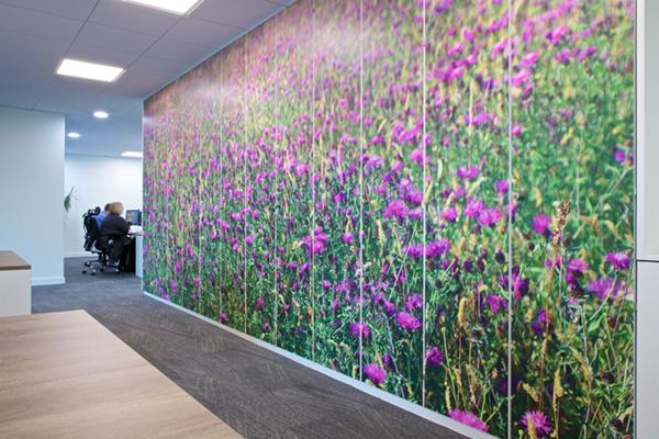 Printed Store wall graphics
